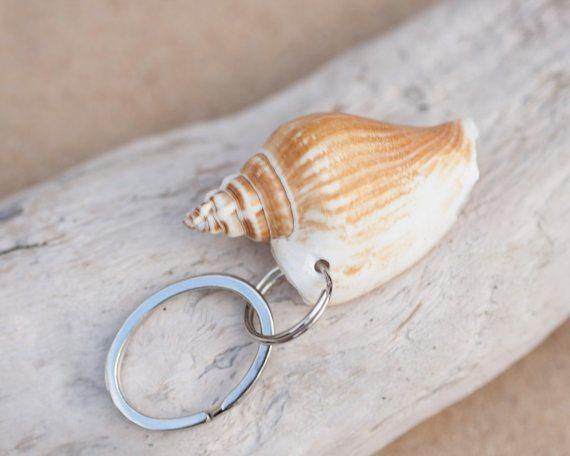 shell key ring
